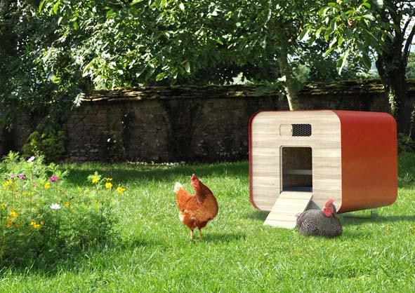 accueillir les poules au jardin decorer sa. Black Bedroom Furniture Sets. Home Design Ideas