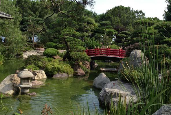 Apprendre la taille d arbres la japonaise decorer sa for Apprendre la cuisine japonaise