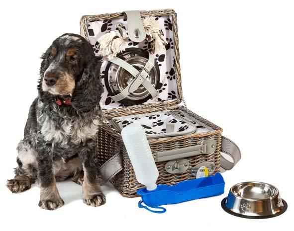 Chic et pratique panier pique nique pour chien decorer sa - Panier pique nique chic ...