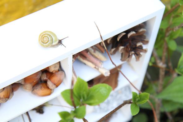 Réaliser un hôtel à insectes GENERAL