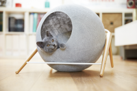 Mobilier chic pour chats exigeants