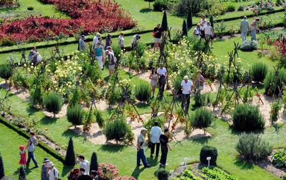 Jardiner le beau, le vrai, le bon au Château de la Bourdaisière