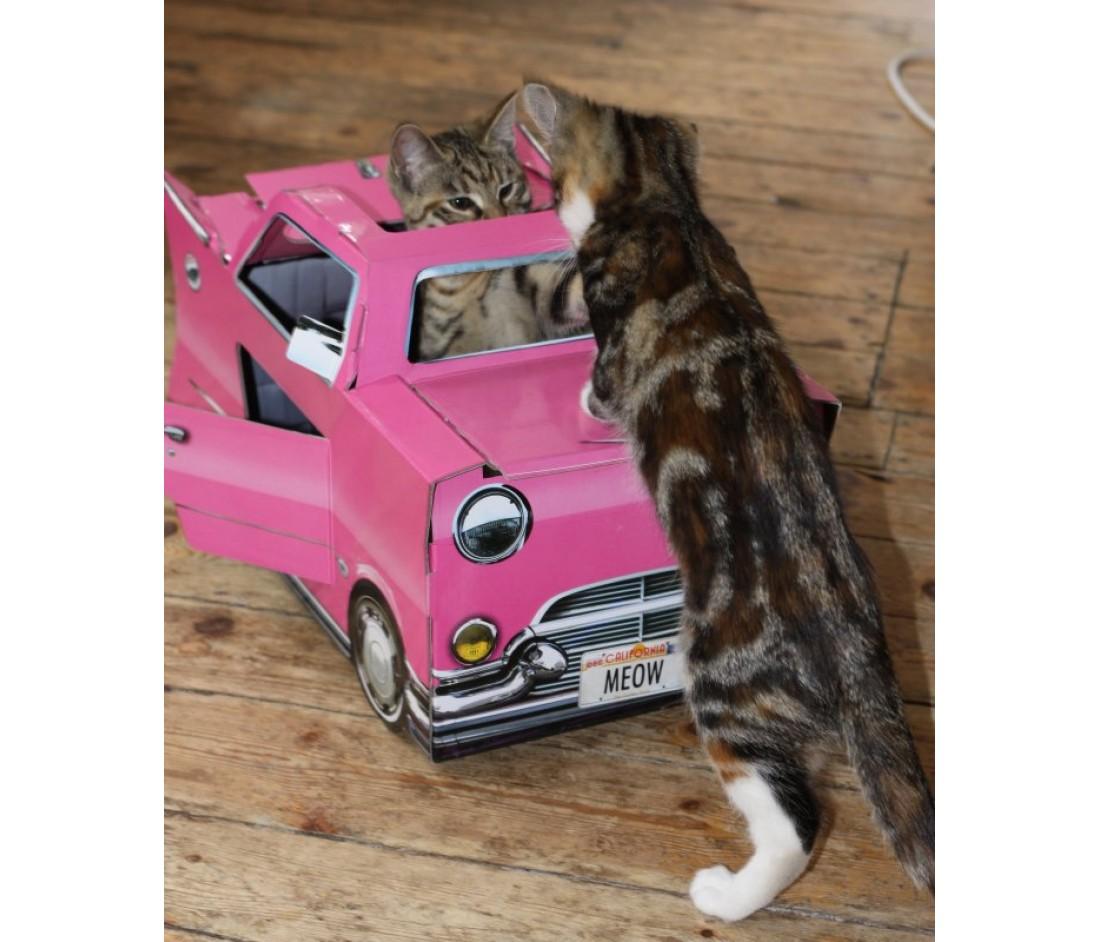 Maisons de jeu pour chats decorer sa for Jeu pour gagner une maison