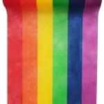 Chemin de table « Arc-en-ciel » en tissu non tissé. Longueur 5 m x 30 cm (9,85 €)