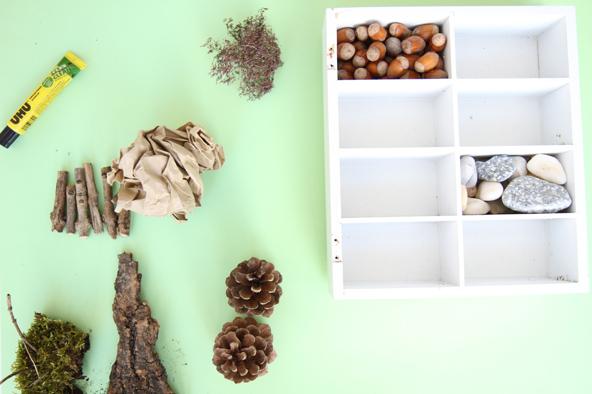 Etape 2 : Au cours d'une sortie en forêt, ramasser avec les élèves de la mousse, des pommes de pin, des brindilles, des noisettes… Si nécessaire, couper les différents éléments collectés en petits morceaux, afin de faciliter le collage et le placement dans les compartiments.