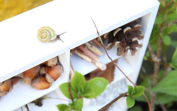 Réaliser un hôtel à insectes
